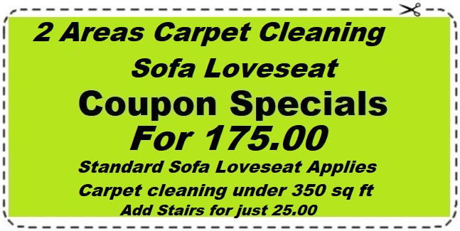 carpet cleaning and upholstery combo