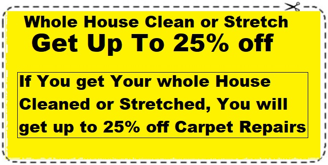 whole house clean or stretch 25% off
