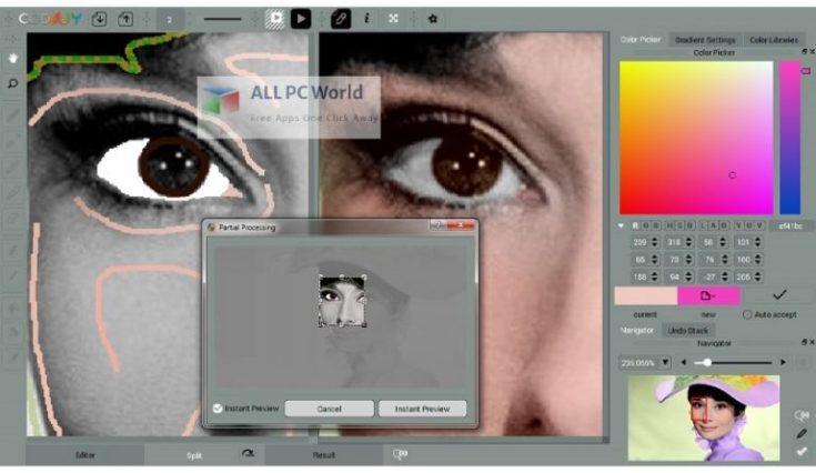 CODIJY-Colorizer-Pro-4-Free-Download