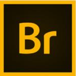 Download-Adobe-Bridge-2021