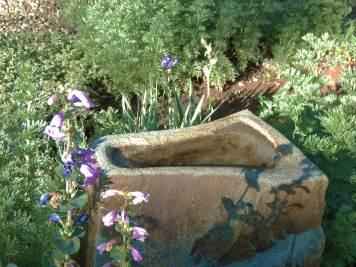 all-creatures-memorial-park-fountain