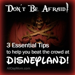 Disneyland Tips: 3 Ways to Stay Ahead of the Disneyland Crowd and Ride More Rides!