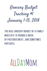 What's Your Grocery Budget? Grocery Budget Tracking #1 Jan 1–15 2018