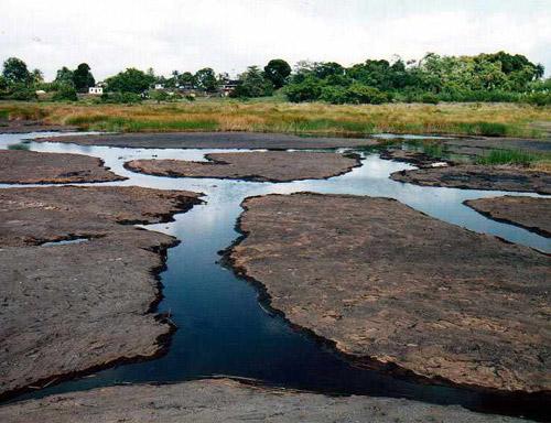 Асфальтовое озеро Пич-Лейк в Тринидад и Тобаго