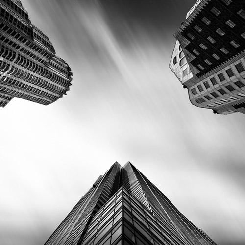 Архитектура небоскребов и геометрия природы. Фото Kevin Saint Grey