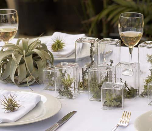 Елочные сады. Идея лесного декора на Новый Год