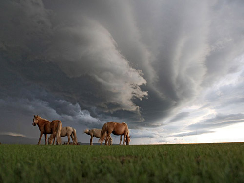 National Geographic - Photo of the Day. Архив за август 2010