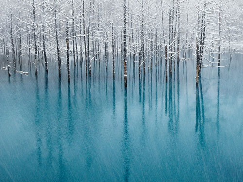 National Geographic - Photo of the Day. Архив за ноябрь 2011