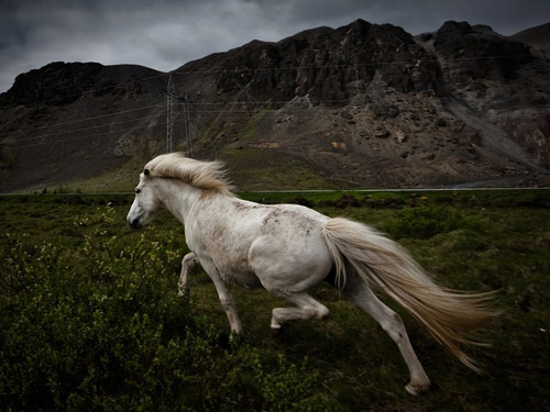 National Geographic - Photo of the Day. Архив за февраль 2011