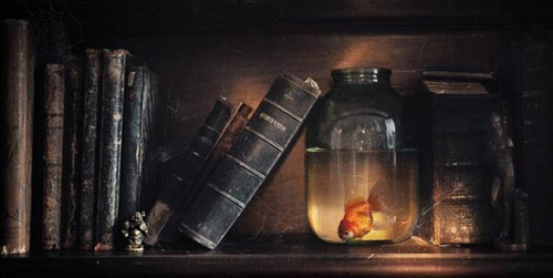 Цитаты&фото. Филосифия слов и кадров