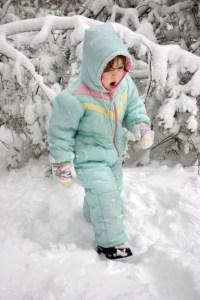 Homemade Snow Cream - Alldonemonkey.com