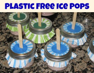 What Do We Do All Day - Plastic-Free Ice Pops