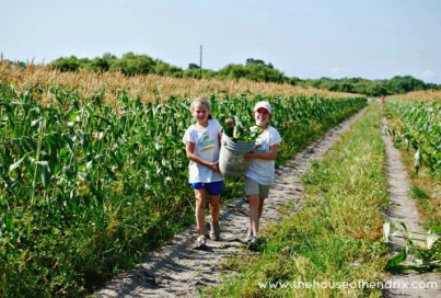 Corn Gleaning Party: Random Acts of Kindness - The House of Hendrix on Alldonemonkey.com