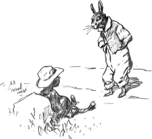 Brer Rabbit and Race in the South