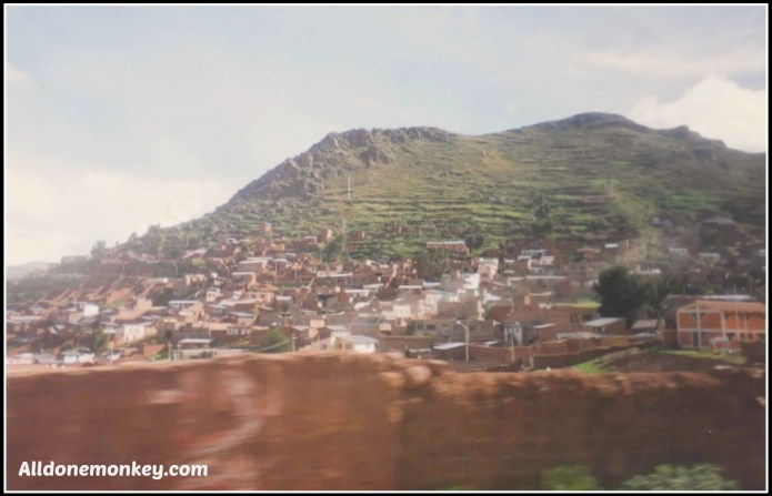Sprouted Quinoa Milk and Resources to Study about Peru - Alldonemonkey.com