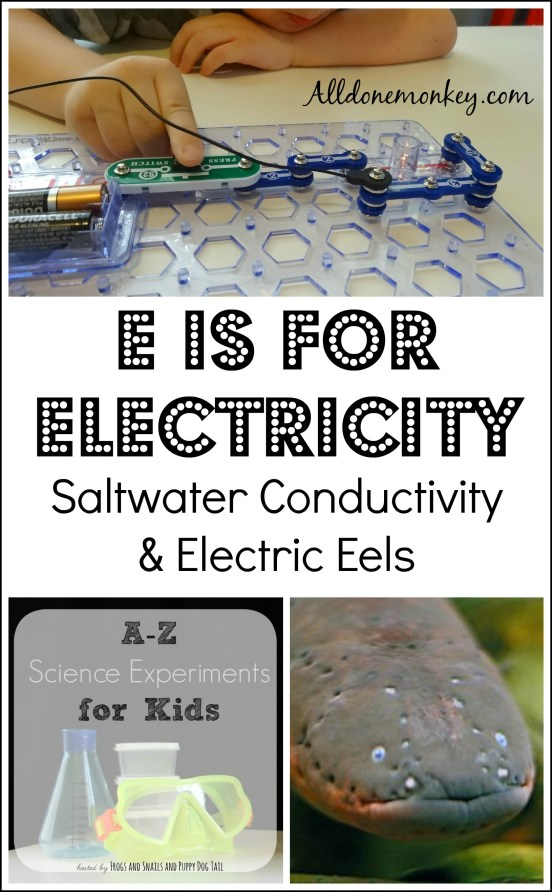 E is for Electricity: Saltwater Conductivity Experiment and Electric Eels | Alldonemonkey.com