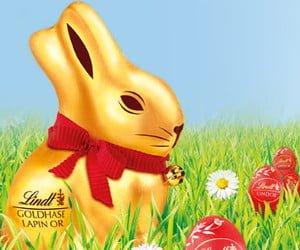 Schokoladen-Hasen von Lindt gewinnen