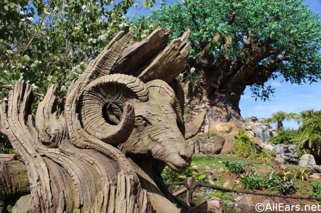 First World Tree