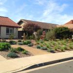 Sustainable Front Yard Carlsbad Allee Landscape Design