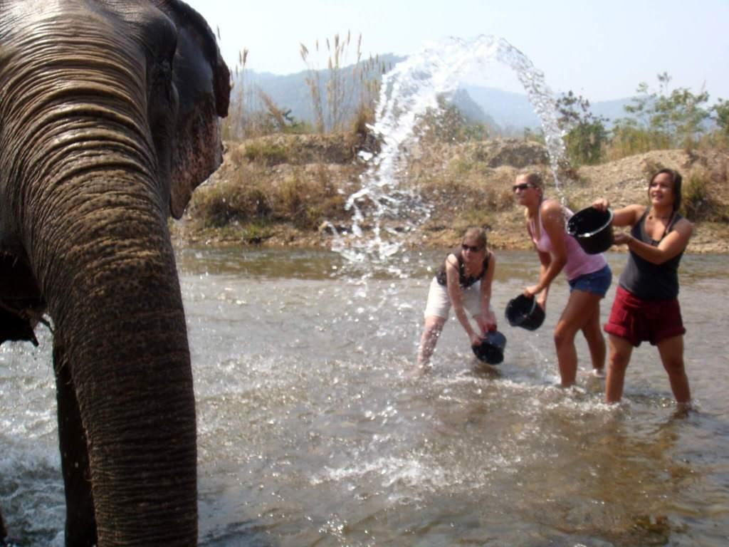 Alleen op vakantie in Thailand