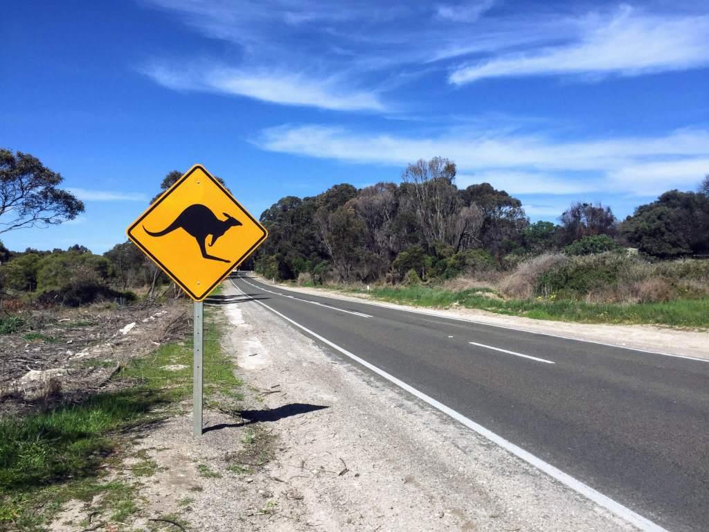 Er zijn heel veel soorten mogelijkheden voor vervoer in Australie