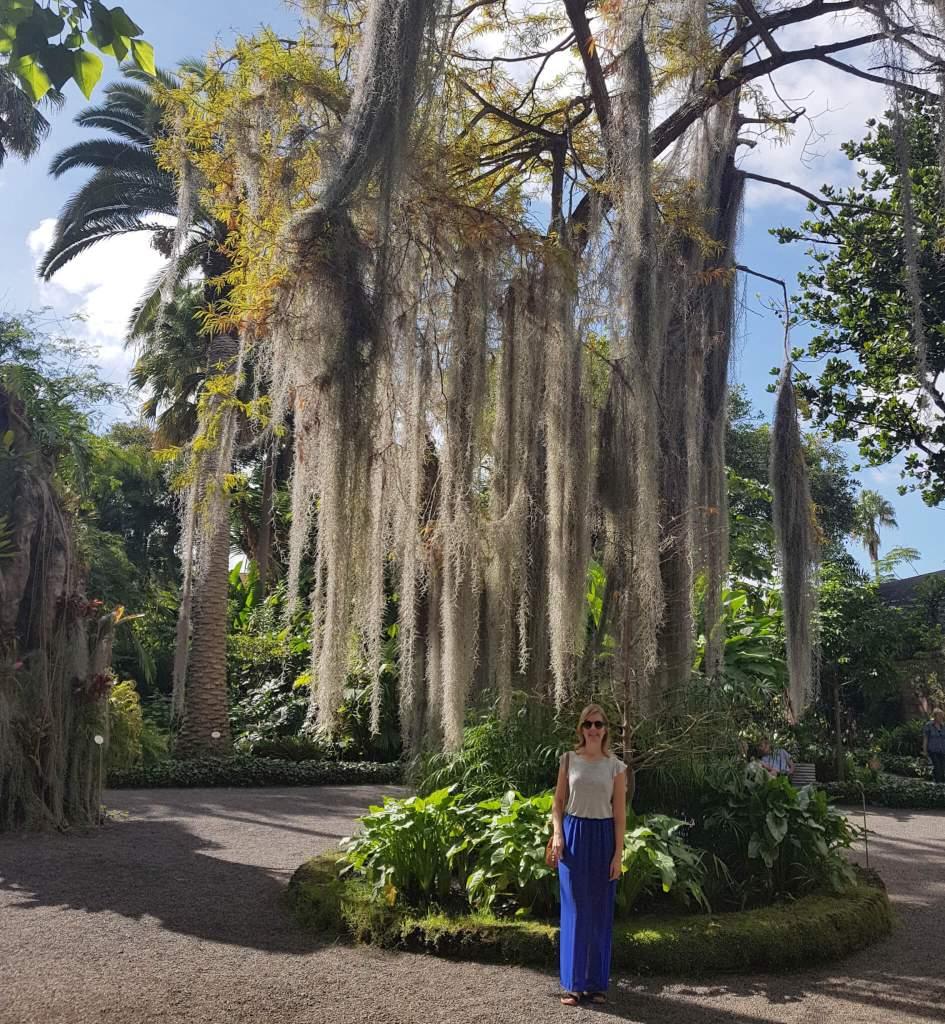 Botanische tuin in Puerto de la Cruz op Tenerife