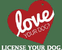 Dog License |