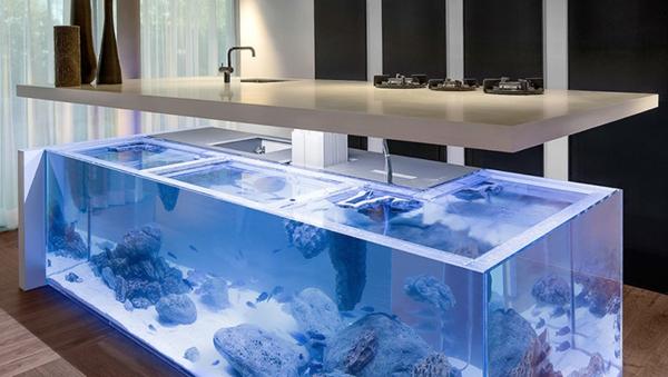 K 252 Cheninsel Mit Aquarium Bringt Die Tropen Zu Ihnen Nach