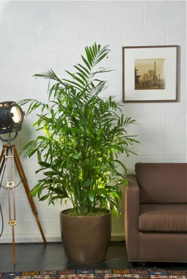 Idea For Decoration Home