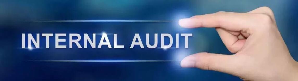 Risk Mitigation With Our Internal Audit Service