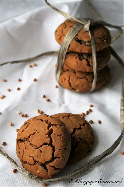 cookies aux graines de sarrasin et pépites de chocolat sans gluten sans lait sans œufs