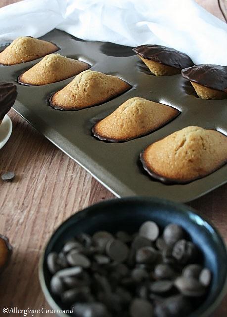 madeleines sans gluten sans lait sans oeufs