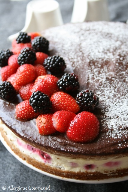 gâteau aux mûres mousse à la menthe sans gluten sans oeufs