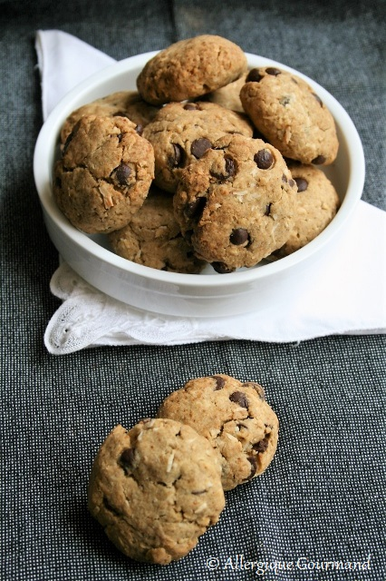 cookies coco chocolat sans gluten sans lait sans oeufs