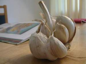 garlic for cold and flu