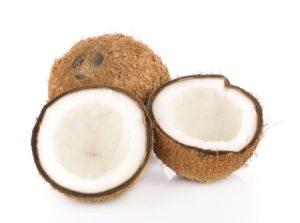 coconut-allergy