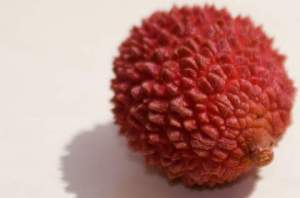 lychee allergy