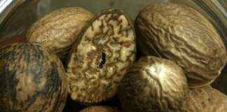 nutmeg allergy symptoms
