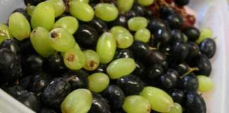 grape-allergy-symptoms
