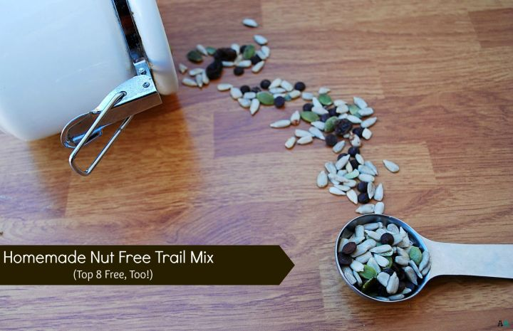 nut-free homemade trial mix