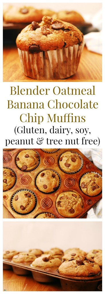 Gluten-free Blender Oatmeal Banana Chocolate Chip Muffins Breakfast Recipe by AllergyAwesomeness