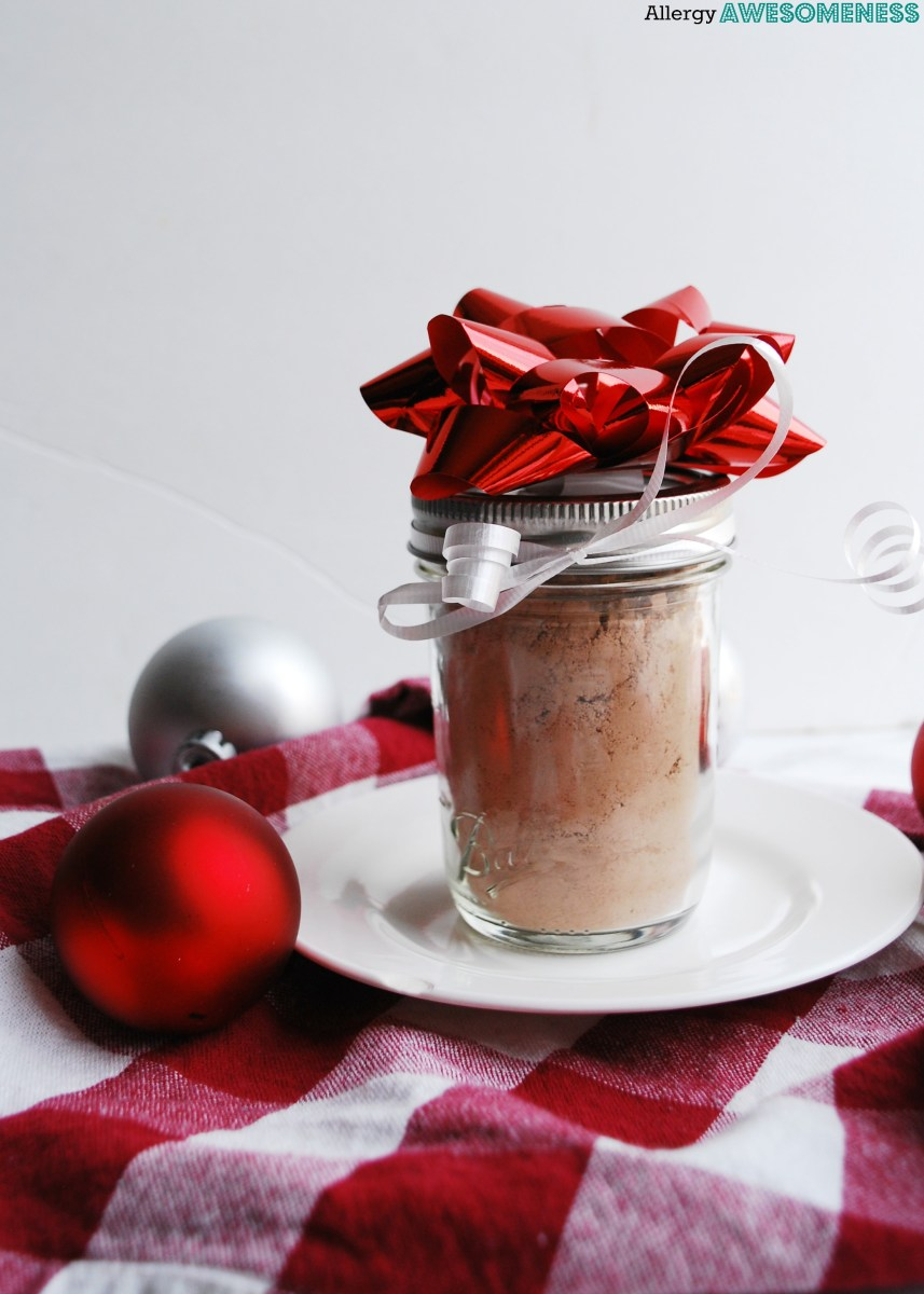 Dairy-free and Vegan Homemade Hot Cocoa Mix (Gluten, dairy, egg, soy, peanut & tree nut free; top 8 free)