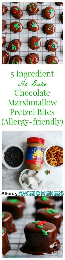 Allergy-friendly, 5 Ingredient, No Bake, Chocolate Marshmallow Pretzel Bites Dessert recipe by AllergyAwesomeness.com