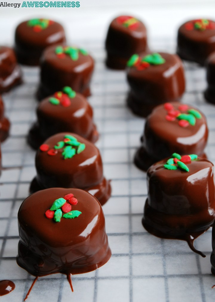 Allergy-Friendly No Bake Chocolate Pretzel Bites (Gluten, dairy, egg, soy, peanut & tree nut free; top 8 free; vegan) Dessert recipe by AllergyAwesomeness.com