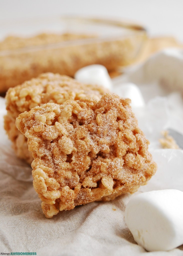 Top-8-Free Snickerdoodle Rice Krispie Treat Dessert Recipe by Allergy Awesomeness