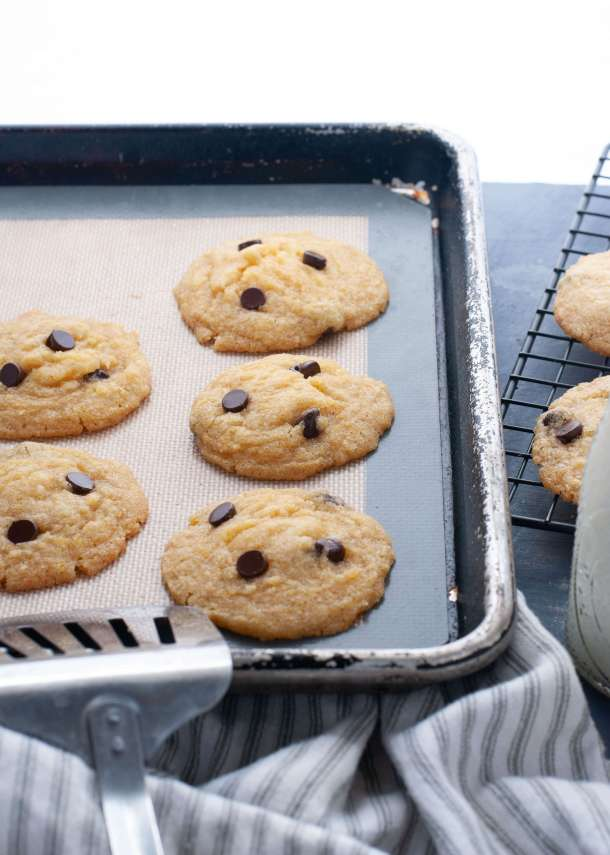 allergy-friendly-chocolate-chip-cookies