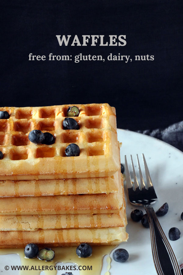 Gluten-free, dairy-free waffles with blueberries and honey