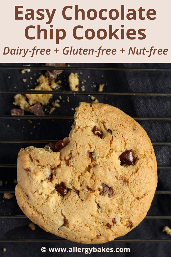 Easy Chocolate Chip Cookies | Dairy-free + Gluten-free + Nut-free