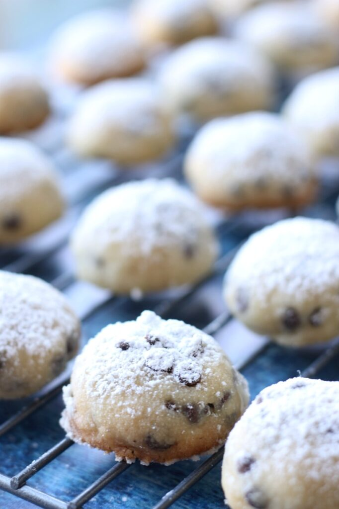 Snowball cookies rolled up in perfect bite-size, vegan treats