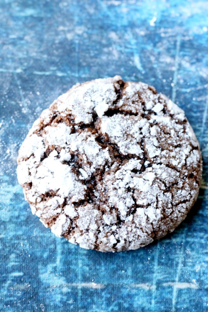 Light and pillowy crinkle cookies, dusted with snowy caps of sugar are a wonderful addition to any Holiday table. DF,EF,NF (Gluten free option)